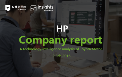 HP Company Report